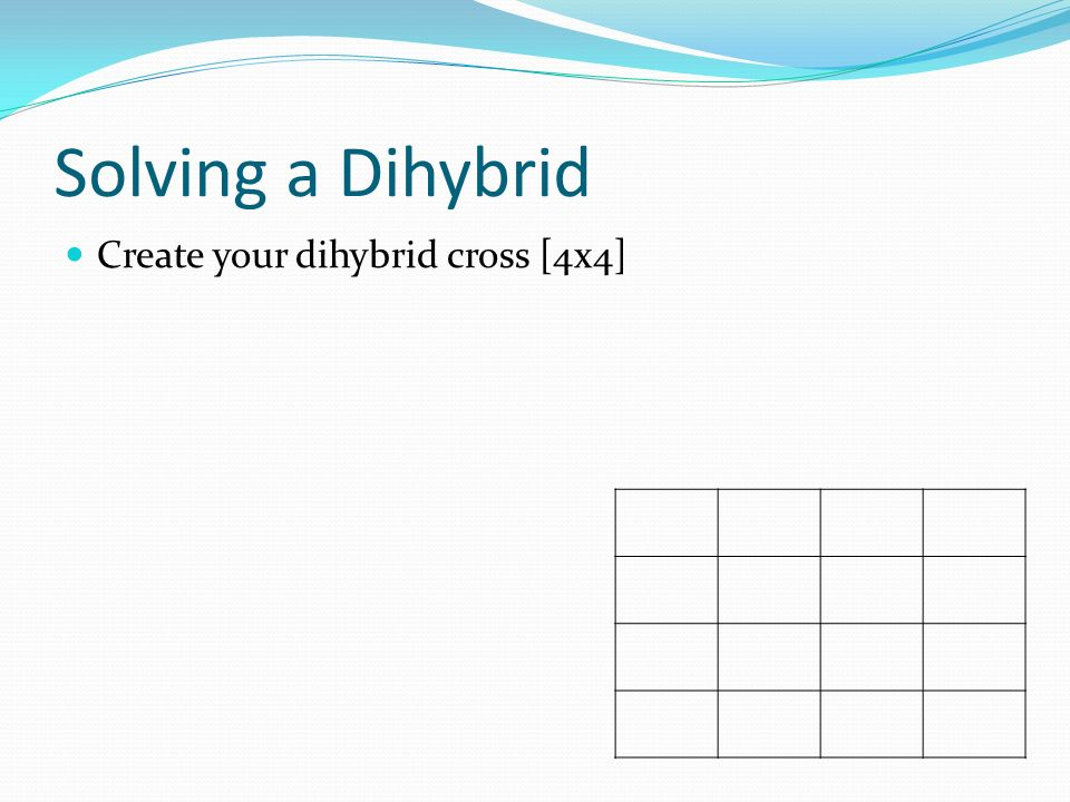 Solving a Dihybrid Create your dihybrid cross [4x4]